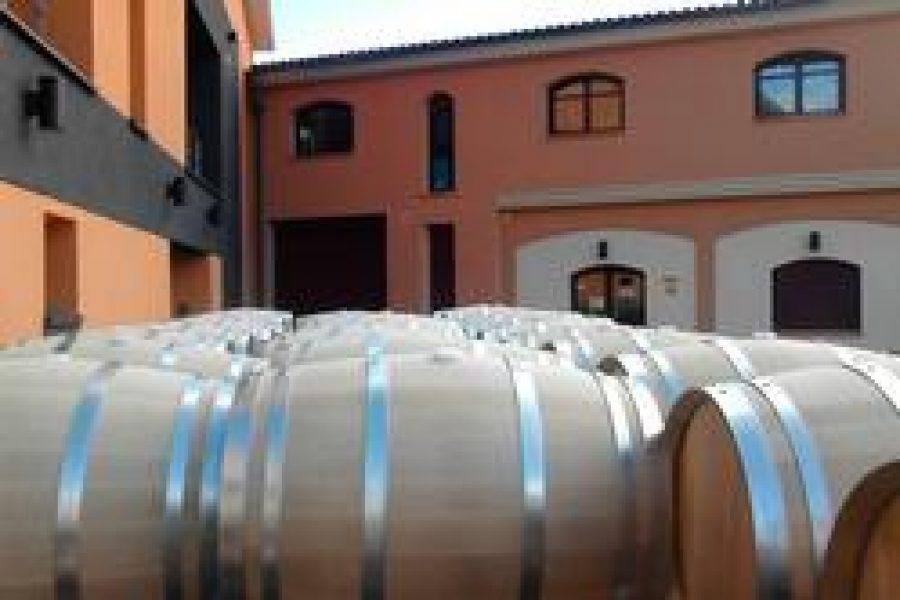 Nuevas barricas de roble francés para nuestros vinos Viña Vilano