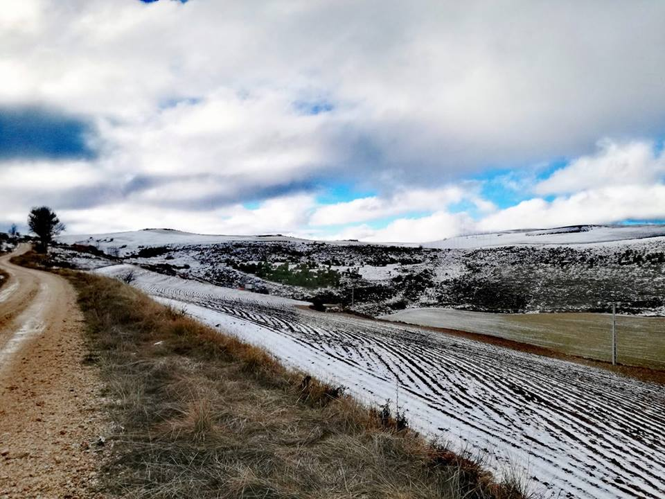La nieve caída en la Ribera del Duero, un aliado perfecto para los viñedos de Viña Vilano